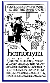 Homonym